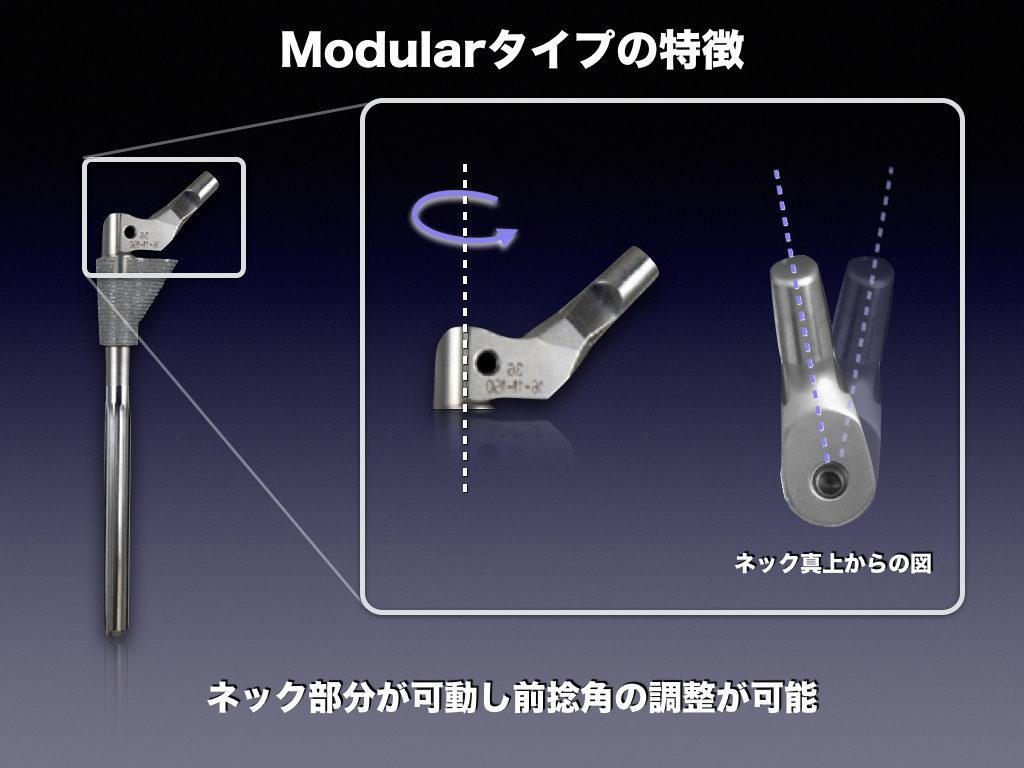 Cementless Stem(Modular)の特徴