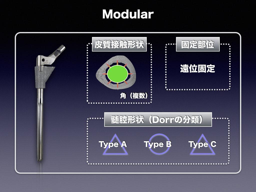 Cementless Stem(Modular)