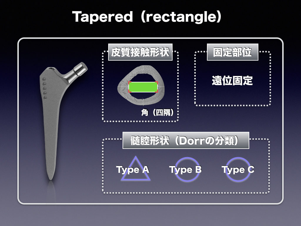 Cementless Stem(Taperd-Rectangle)